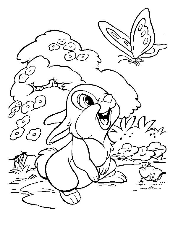 Раскраска зайчонок и бабочка